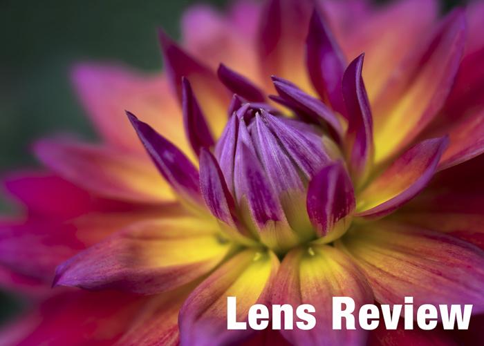 Anne Belmont Lens Review