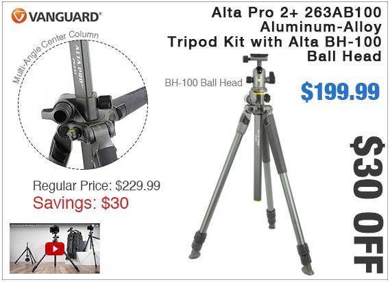Vanguard Alta Pro 2 plus BH-100 Ball Head