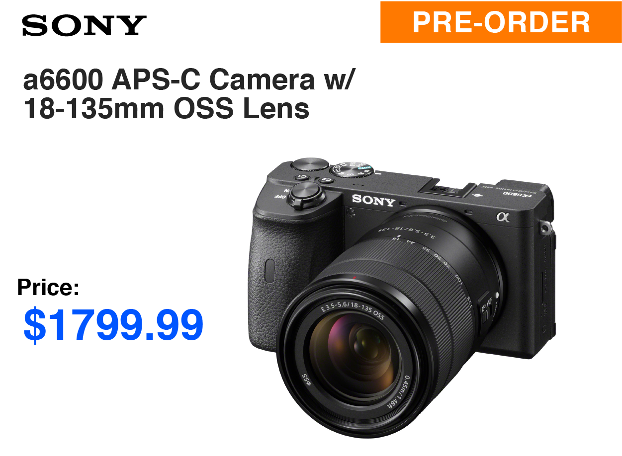 Sony Alpha 6600 APS-C Mirrorless Camera with 18-135mm f/3.5-5.6 OSS Lens