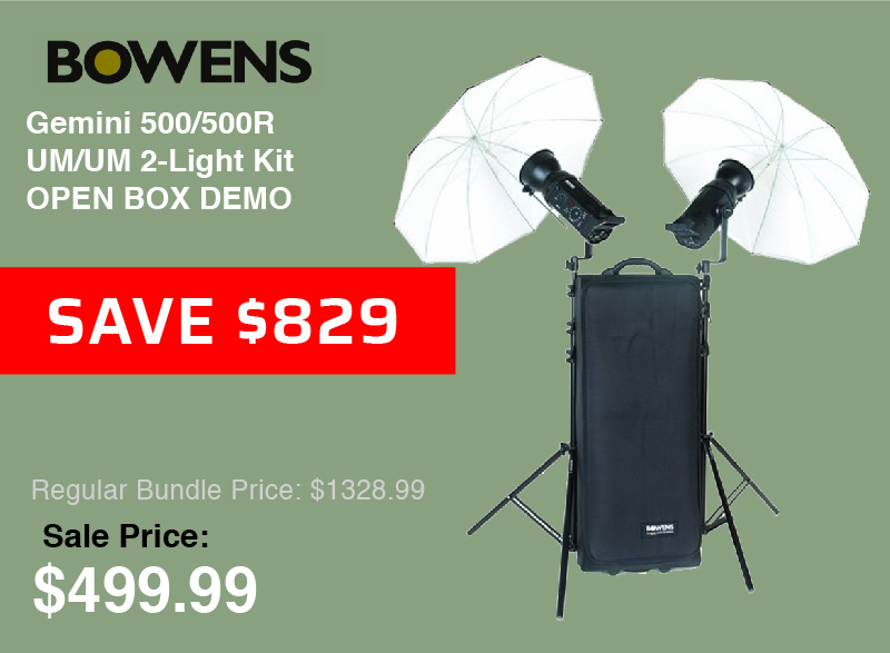 Bowens Gemini 750Pro Heads