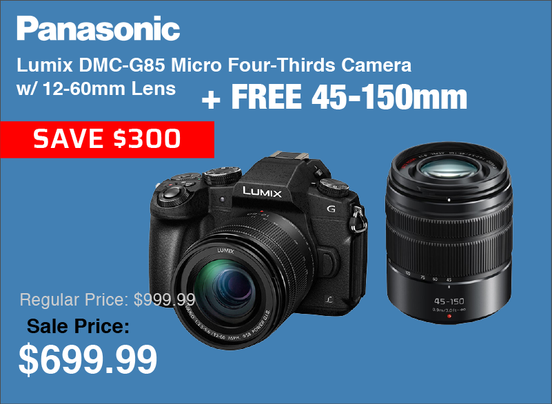 Panasonic F85 Kit with Free 45-150mm Lens